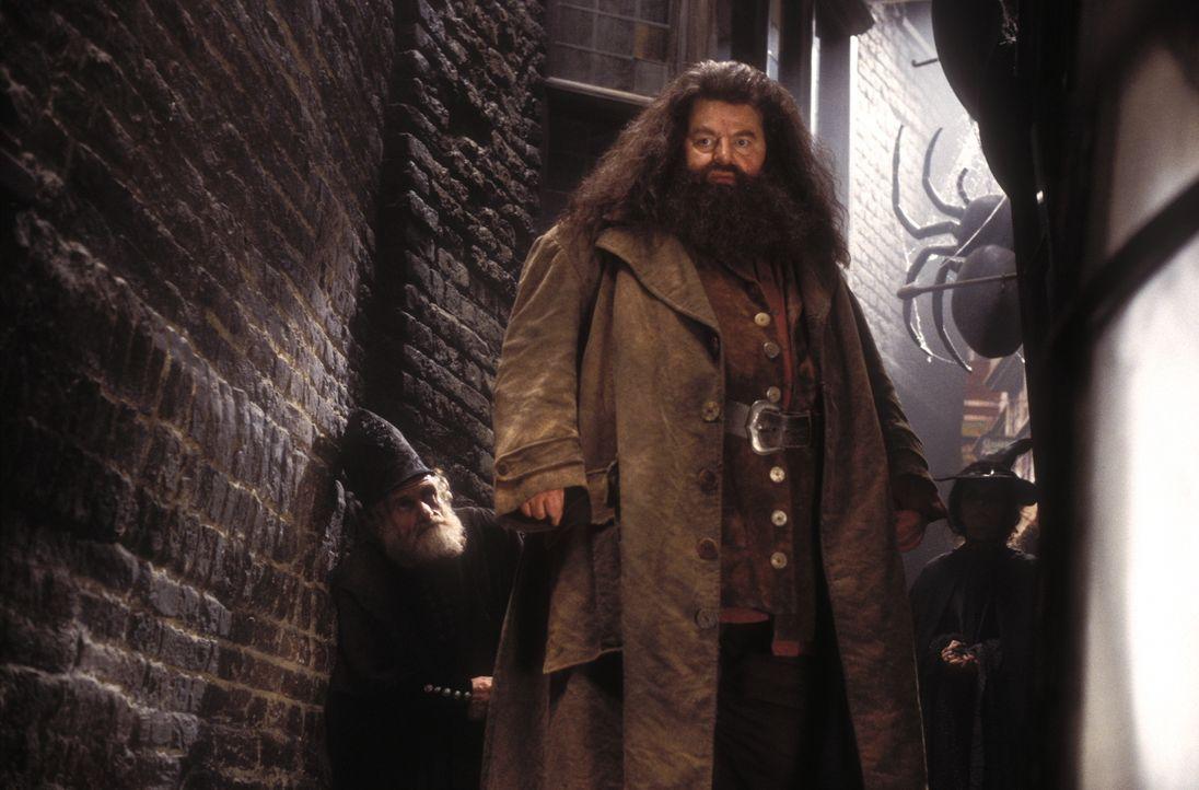 Zunächst glauben Harry und seine Freunde, dass Hagrid (Robbie Coltrane) vor 50 Jahren die Kammer des Schreckens geöffnet hat. Doch dann geschieht et... - Bildquelle: Warner Bros. Pictures