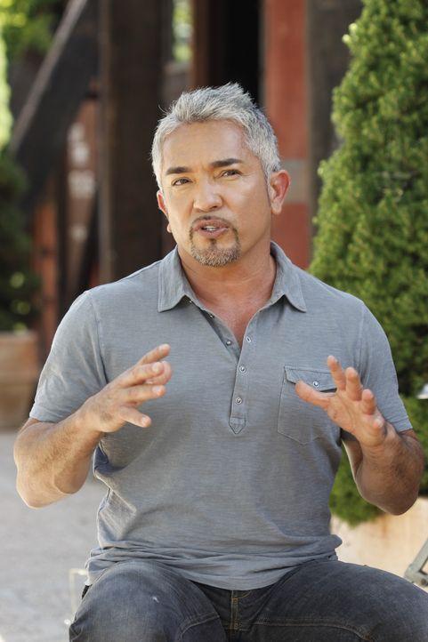 Cesar erklärt, was mit Rosie passieren soll - Bildquelle: © 360 Powwow, LLC / Belén Ruiz Lanzas