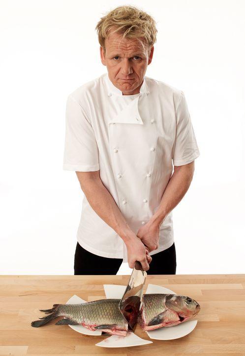 Gordon Ramsay: Knallhart in der Küche - Bildquelle: Fox Broadcasting. All rights reserved.