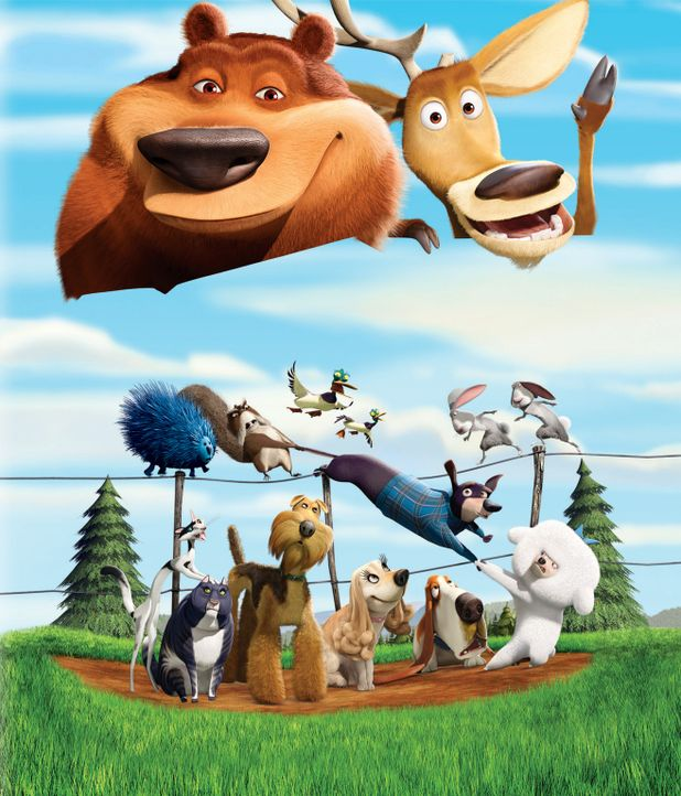 Ein aufregendes Abenteuer wartet auf Hirsch Elliot (oben r.), Grizzlie Boog (oben l.) und ihre Freunde. - Bildquelle: 2008 Sony Pictures Animation Inc. All Rights Reserved.