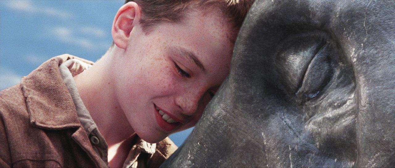 Der schüchterne Angus (Alex Etel) findet in dem Wasserdrachen einen richtigen Freund, der ihm Mut und Selbstbewusstsein gibt. Das Leben des Tieres... - Bildquelle: CPT Holdings, Inc. All Rights Reserved. (Sony Pictures Television International)