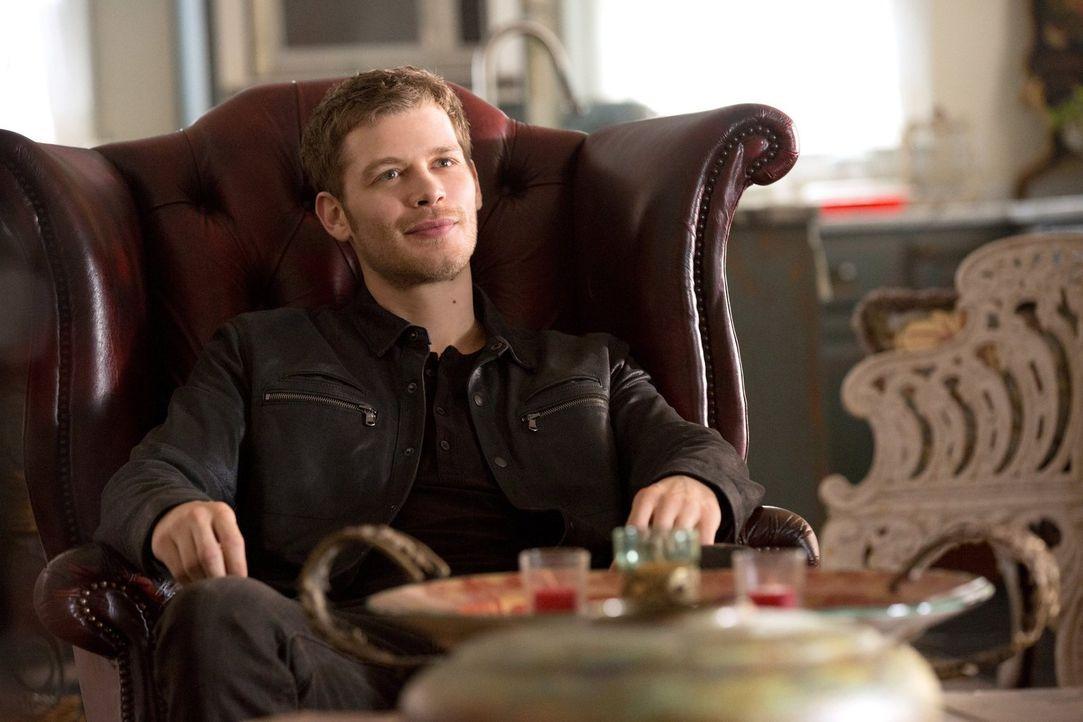 Wird es Klaus (Joseph Morgan) gelingen, ein riesiges Massaker auf seinem Anwesen zu verhindern? - Bildquelle: Warner Bros. Television