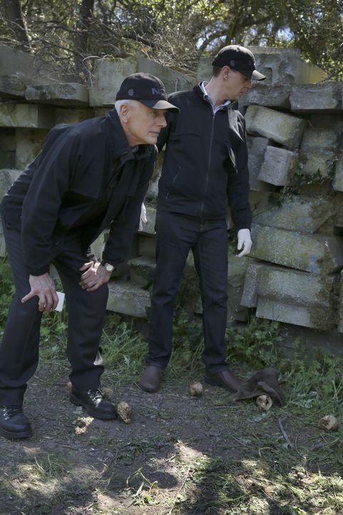 Der Mord an einem Marine-Sergeant bringt Gibbs (Mark Harmon, l.) und McGee (Sean Murray, r.) ins Grübeln. Haben sie ein Hinweis am Tatort übersehen? - Bildquelle: 2017 CBS Broadcasting, Inc. All Rights Reserved.