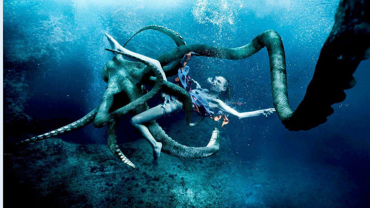 MDM-Kroatien-Octopus-Sandy-01-SAT1-Oliver-Gast - Bildquelle: SAT.1/Oliver Gast