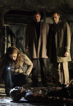 Castle - Schnell steht für Kate (Stana Katic, l.) fest, dass das Opfer des Br...