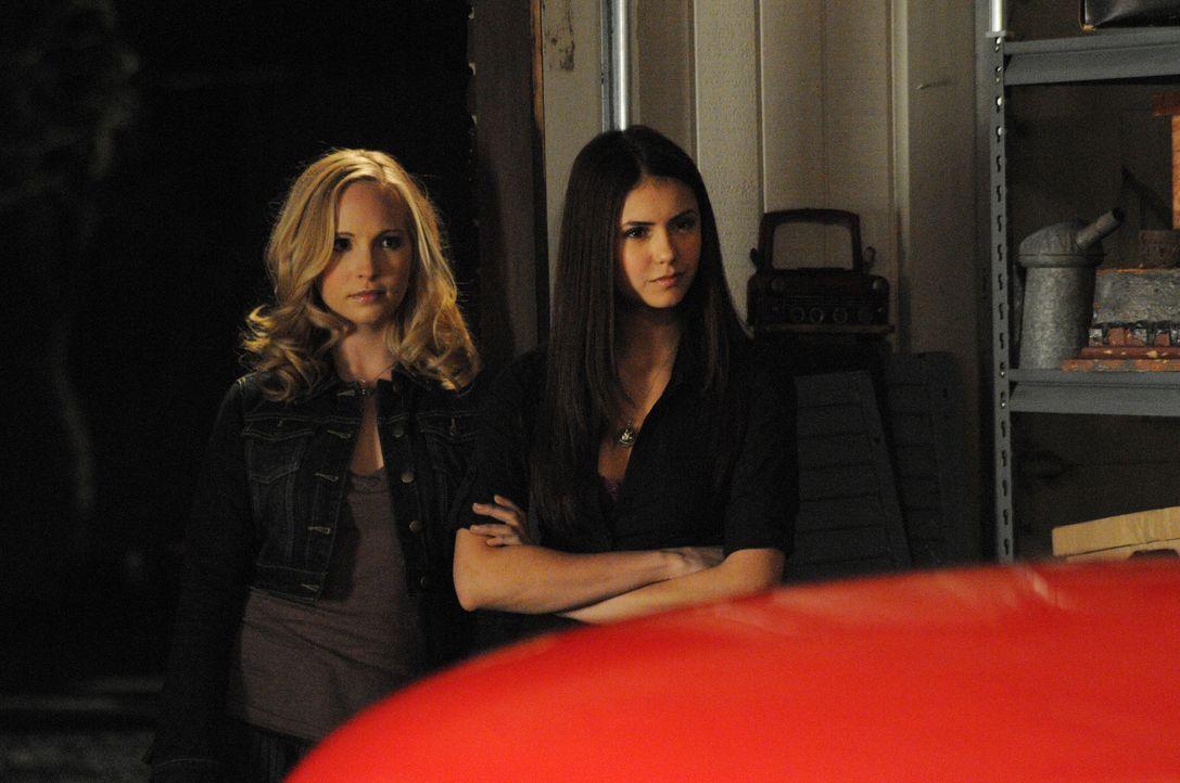 Caroline (Candice Accola, l.) ist immer noch eifersüchtig auf Elenas (Nina Dobrev, r.) vertraute Beziehung zu Matt. - Bildquelle: Warner Bros. Television