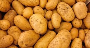 Kartoffeln eignen sich hervorragend, um überschüssige Säure auszugleichen, ab...