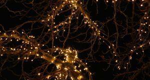 Weihnachtszeit_2015_12_07_Adventslichter_Bild 1_pixabay