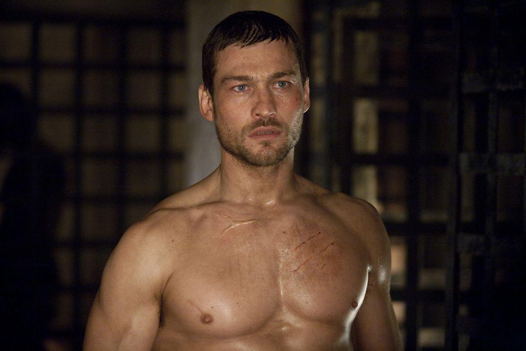 Über den Verlust seiner geliebten Frau kommt Spartacus (Andy Whitfield) kaum hinweg. Nun scheint der Zeitpunkt für ihn gekommen zu sein - um eine... - Bildquelle: 2010 Starz Entertainment, LLC