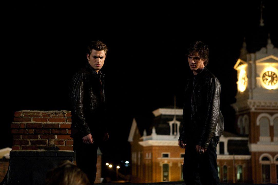 Nachdem Damon (Ian Somerhalder, r.) die hübsche Vicki in seine Gewalt gebracht hat, will er seinen Bruder Stefan (Paul Wesley, l.) dazu überreden, v... - Bildquelle: Warner Brothers