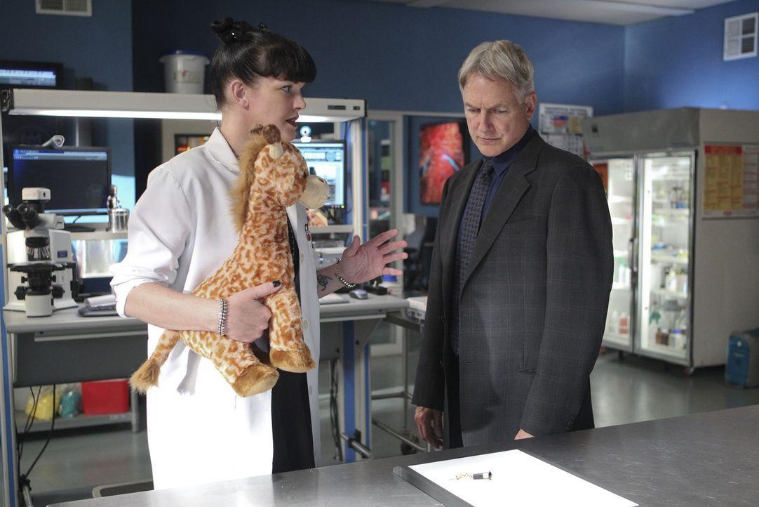 Was hat die Giraffe mit dem aktuellen Fall zu tun? Abby (Pauley Perrette, l.) hat Vermutungen und teilt diese Gibbs (Mark Harmon, r.) mit. Doch hat... - Bildquelle: Sonja Flemming CBS Television