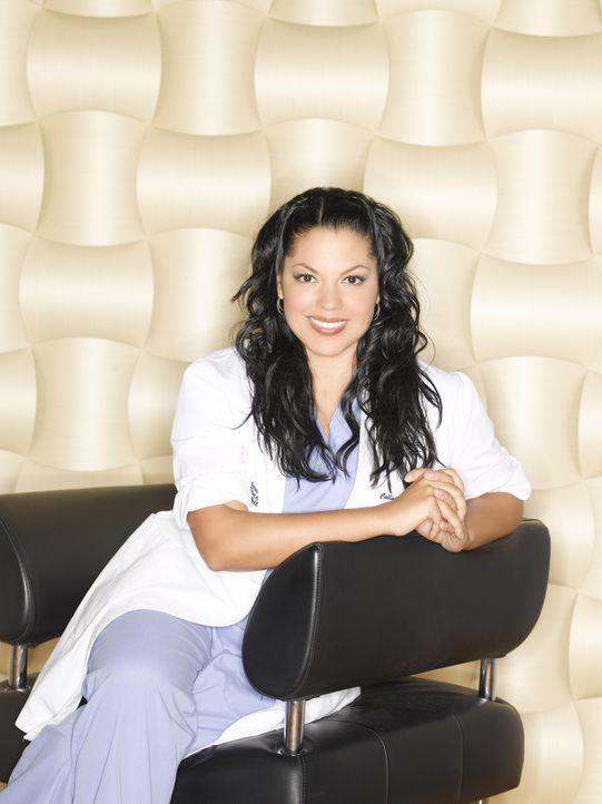 (6. Staffel) - Der berufliche, wie auch der private Stress nimmt nicht ab: Dr. Callie Torres (Sara Ramirez) ... - Bildquelle: Touchstone Television