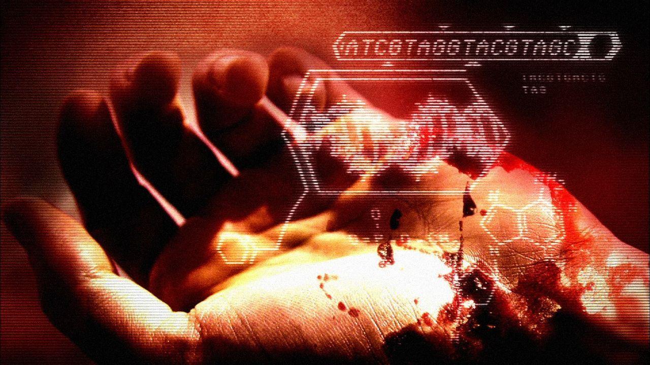 Um einen Mordfall lösen zu können, bedarf es einer akribischen und sorgfältigen Ermittlungsarbeit. Wie eine solche nach einem echten Verbrechen auss... - Bildquelle: Cineflix 2007