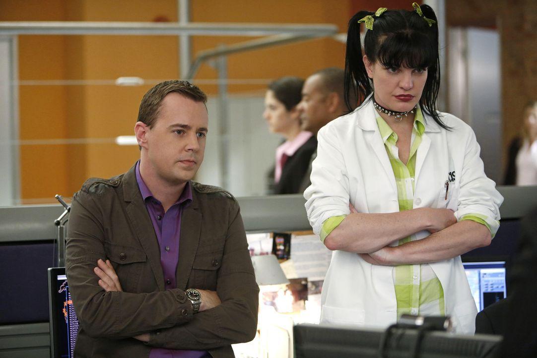 Versuchen alles, damit Richard Parsons Gibbs nicht zu Fall bringen kann: McGee (Sean Murray, l.) und Abby (Pauley Perrette, r.) ... - Bildquelle: CBS Television
