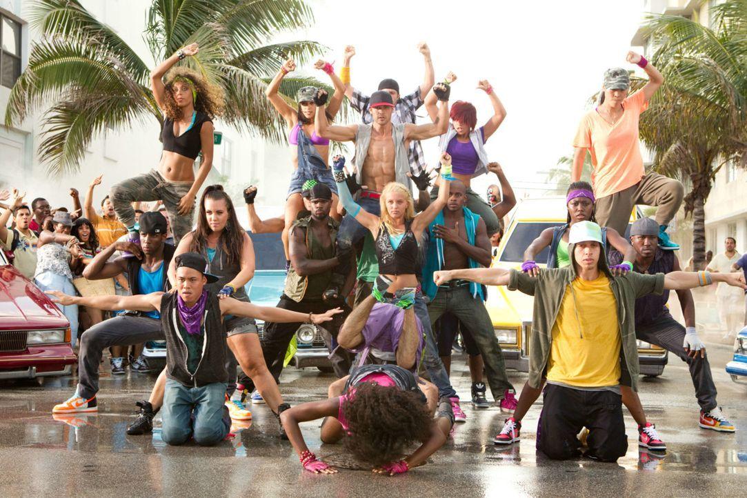 """Der World Jam Contest kommt immer näher und näher. Viele Tanzgruppen trainieren wie verrückt, um bei dem Wettbewerb zu gewinnen. """"House of Pirate... - Bildquelle: Constantin Film"""