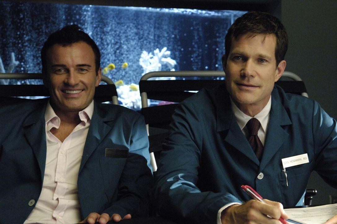 Sean (Dylan Walsh, r.) und Christian (Julian McMahon, l.) wagen eine wegweisende Operation, die das Schicksal der Praxis McNamara/Troy aufs Spiel se... - Bildquelle: TM and   2004 Warner Bros. Entertainment Inc. All Rights Reserved.