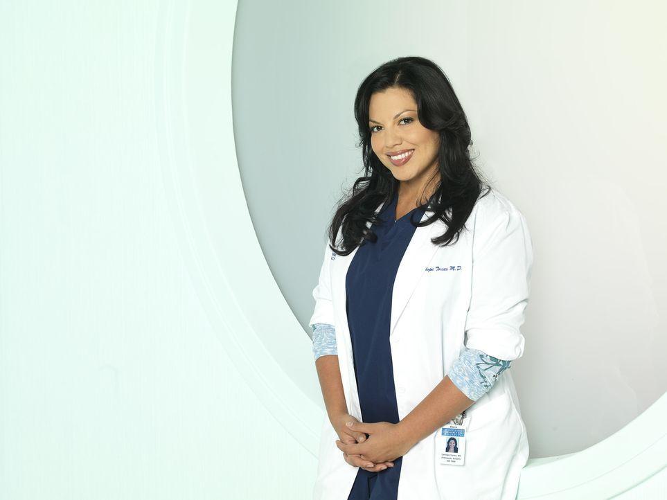 (8. Staffel) - Als Ärztin muss Dr. Callie Torres (Sara Ramirez) täglich mit neuen Überraschungen rechnen ... - Bildquelle: ABC Studios