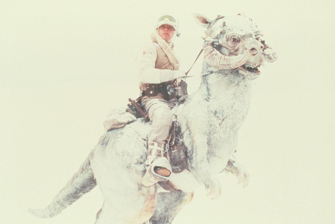 Ausritt auf dem Eisplaneten: Luke Skywalker (Mark Hamill, oben) ist mit dem Taun-Taun auf der Suche nach gefährlichen Asteroiden ... - Bildquelle: Lucasfilm LTD. & TM. All Rights Reserved.