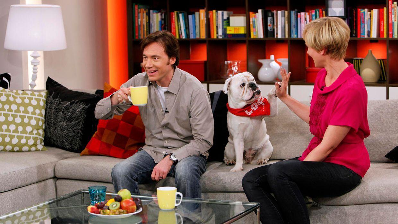 fruehstuecksfernsehen-studiohund-lotte-in-action-im-studio-081 - Bildquelle: Ingo Gauss