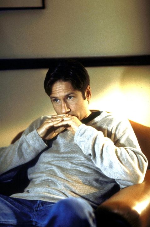 Mulder (David Duchovny) hat ein Komplott der Regierung aufgedeckt. - Bildquelle: TM +   Twentieth Century Fox Film Corporation. All Rights Reserved.