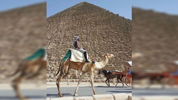 Floyd Mayweather auf Kamel in Kairo