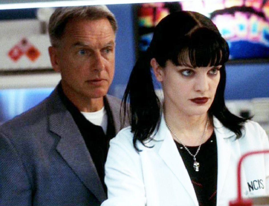 Special Agent Leroy Gibbs (Mark Harmon, l.) und seine Kollegin Abby Sciuto (Pauley Perrette, r.) untersuchen die Spuren vom Tatort ... - Bildquelle: CBS Television