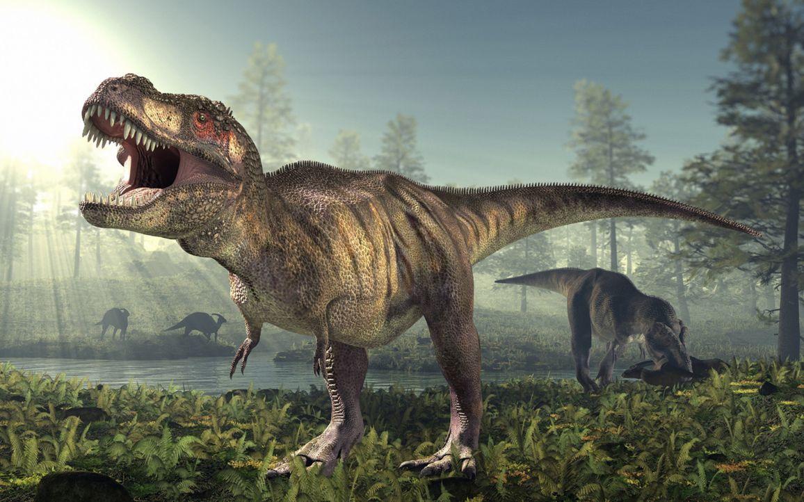Warum sind die Dinosaurier ausgestorben? Haben Außerirdische sie ausgerottet, um Platz für die Menschheit zu schaffen? - Bildquelle: Getty Images/ROGER HARRIS/SPL