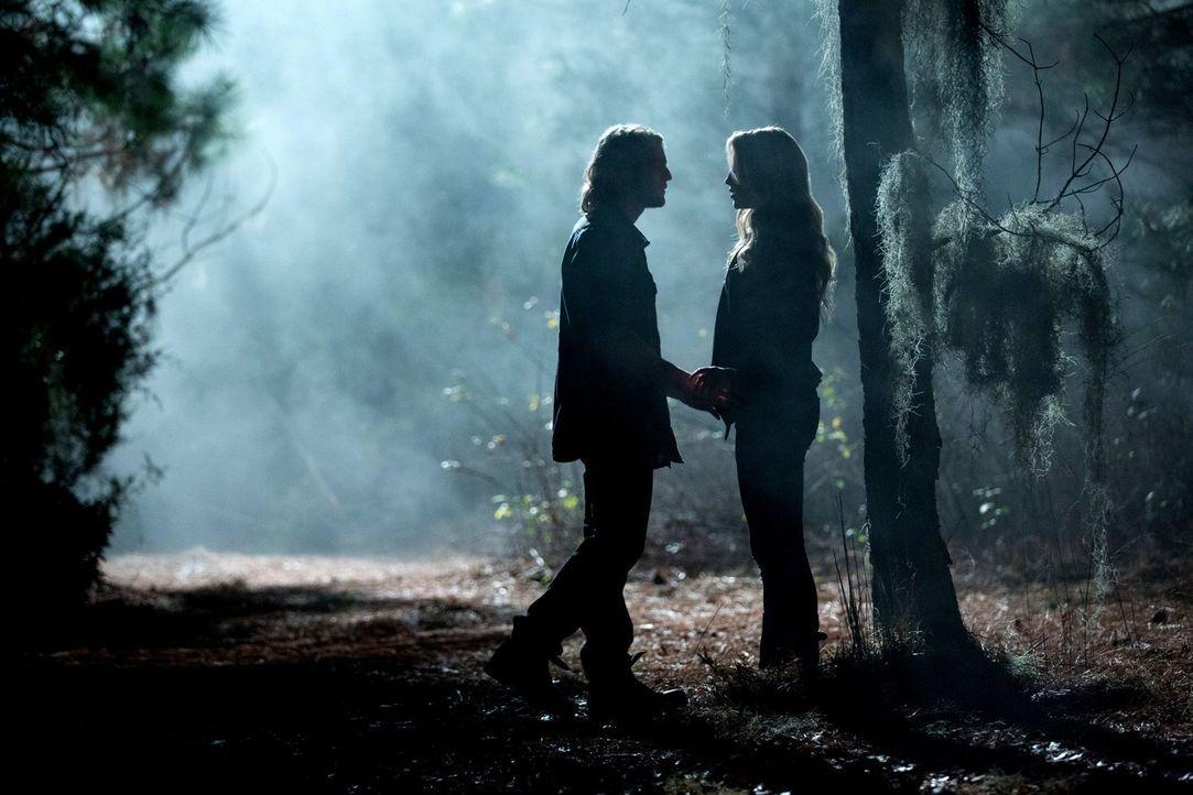 Anders als erwartet ist Rebekah (Claire Holt, r.) schwer beeindruckt von Hayleys Familie, vor allem von Oliver (Chase Coleman, l.). Wird ihr dies zu... - Bildquelle: Warner Bros. Television