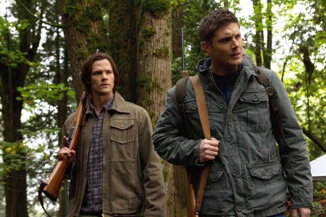 Ein Wesen attackiert Menschen in den Wäldern des New Jersey State Parks. Sam (Jared Padalecki, l.) und Dean (Jensen Ackles, r.) nehmen die Jagd auf... - Bildquelle: Warner Bros. Television