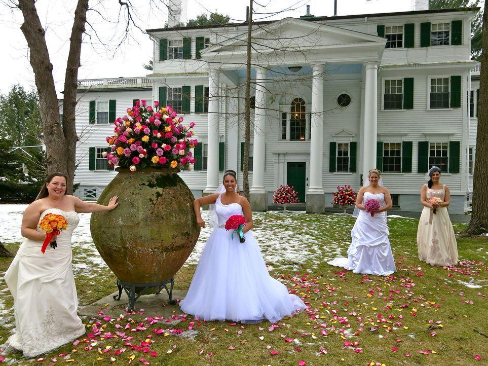 Jede der vier Bräute glaubt, die perfekte Hochzeit organisiert zu haben, doch wer wird auch die Konkurrenz davon überzeugen können: Lisa (l.), Heath... - Bildquelle: Richard Vagg DCL