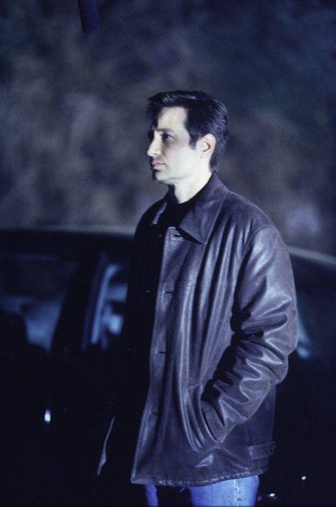 Nach wie vor ist Mulder (David Duchovny) auf der Suche nach Hinweisen für das plötzliche Verschwinden seiner Schwester ... - Bildquelle: 1999-2000 Twentieth Century Fox Film Corporation