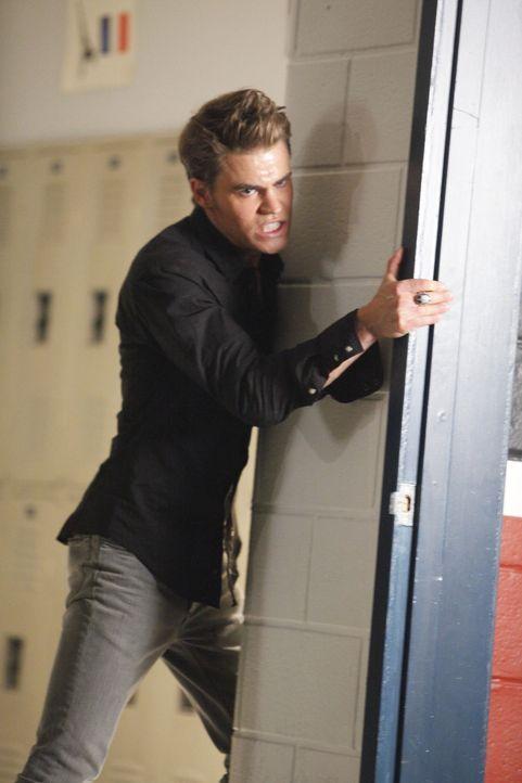 Stefan Salvatore (Paul Wesley) hat den Drang, Elenas Blut zu trinken und sie zu töten ... - Bildquelle: Warner Bros. Television