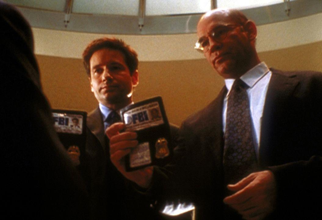 """Skinner (Mitch Pileggi, r.) und Mulder (David Duchovny, l.) wollen nach dem mysteriösen Tod eines Belastungszeugen, der gegen """"Morley Tobacco"""" aussa... - Bildquelle: TM +   2000 Twentieth Century Fox Film Corporation. All Rights Reserved."""