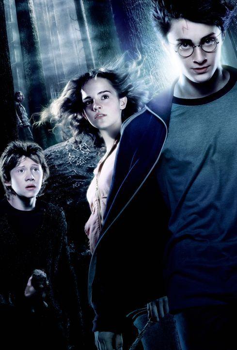 Der Verbrecher Sirius Black (Gary Oldman, hinten l.) ist aus dem Hexengefängnis von Askaban entkommen und jetzt hinter Harry Potter (Daniel Radcliff... - Bildquelle: Warner Television
