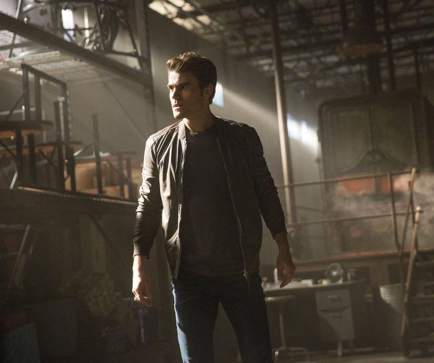 Noch ahnen weder Stefan (Paul Wesley) noch seine Freunde, dass sie im Kampf gegen Sybil nicht unbeobachtet sind ... - Bildquelle: Warner Bros. Entertainment, Inc.