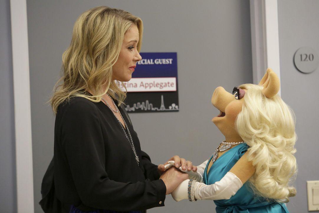 Nachdem Christina Applegate (l.) ein peinliches Video von Miss Piggy (r.) in deren Show gezeigt hat, herrscht zwischen den beiden Krieg. Doch wie wi... - Bildquelle: Nicole Wilder ABC Studios