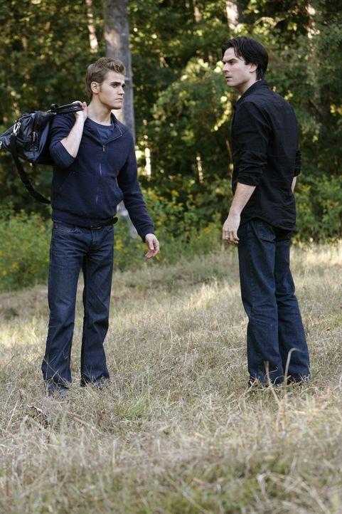 Damon (Ian Somerhalder, r.) vergewissert sich, ob sein kleinerer Bruder (Paul Wesley, l.) sich bewusst ist, dass er den Kampf um Elena mit viel älte... - Bildquelle: Warner Brothers