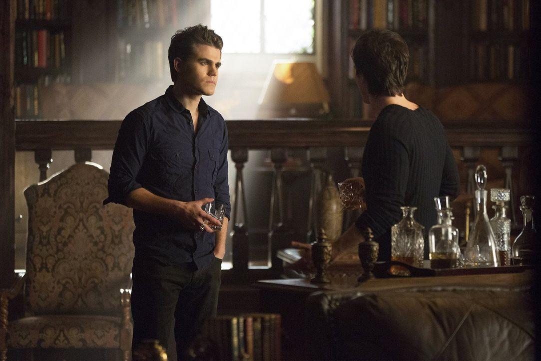 Hat es Stefan (Paul Wesley) mit seinem Bruder zu weit getrieben? Die beiden Vampire haben Elena eingesperrt - angeblich nur bis sie Gefühle wieder... - Bildquelle: Warner Brothers