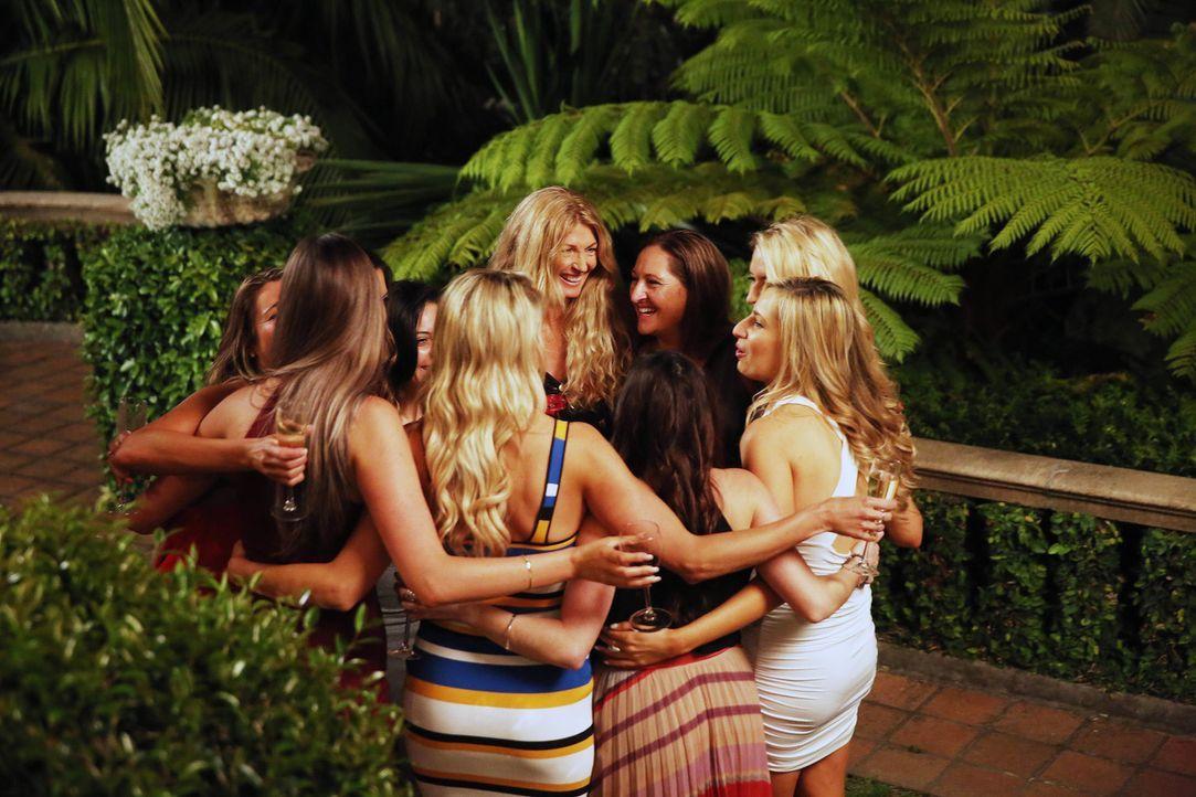 Bei ihrem Jungesellen- und Jungesellinnenabschied treffen sich die zehn Bräute und zehn Bräutigame, um ihre letzte Nacht als Single zu feiern, ehe s... - Bildquelle: Nigel Wright ENDEMOLSHINE AUSTRALIA AND CHANNEL NINE