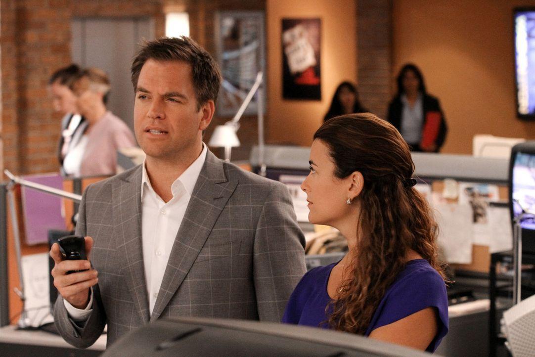 Ermitteln in einen neuen Fall: Ziva (Cote de Pablo, r.) und Tony (Michael Weatherly, l.) ... - Bildquelle: CBS Television