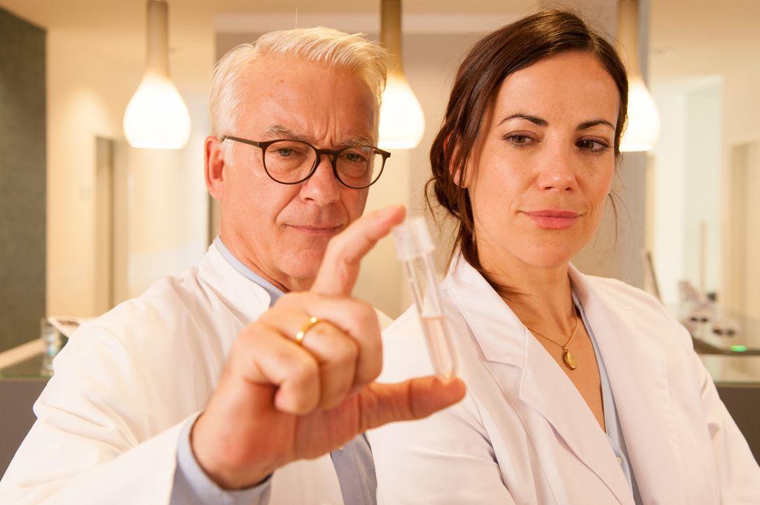 In ihrer Klinik verhelfen Volker (Christoph M. Ohrt, l.) und Kathrin Niebling (Bettina Zimmermann, r.) Familien zum Babyglück - eigentlich ... - Bildquelle: Britta Krehl SAT.1/Britta Krehl