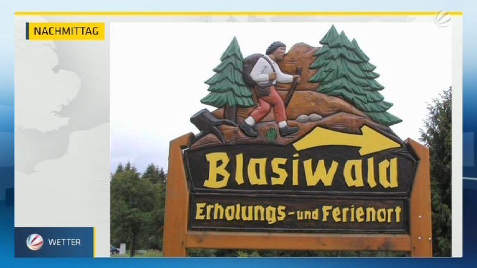 Platz1-Blasiwald