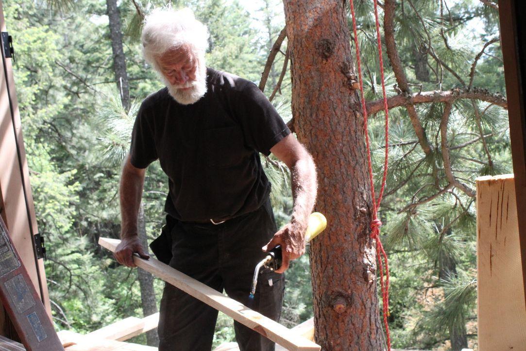 Die Treehouse Guys befinden sich in der Wildnis von Idaho, um das zu tun, was sie am besten können: Baumhäuser designen und bauen. Ihre Kunden wünsc... - Bildquelle: 2016,DIY Network/Scripps Networks, LLC. All Rights Reserved