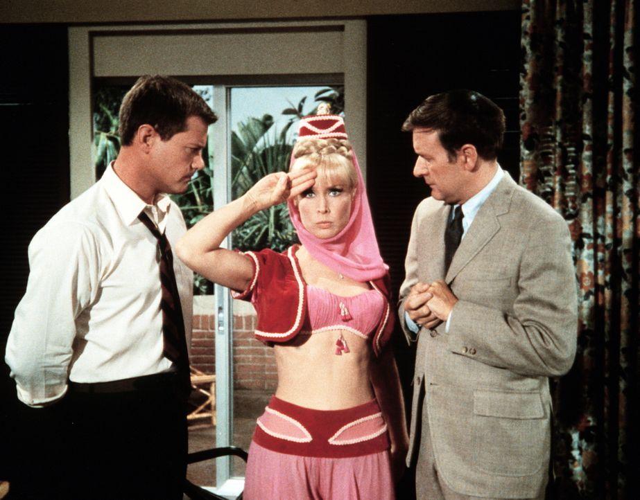 Tony (Larry Hagman, l.) und Roger (Bill Daily, r.) erfinden einen Geheimauftrag, um sich so ungestört von Jeannie (Barbara Eden, M.) in Honolulu ver... - Bildquelle: Columbia Pictures
