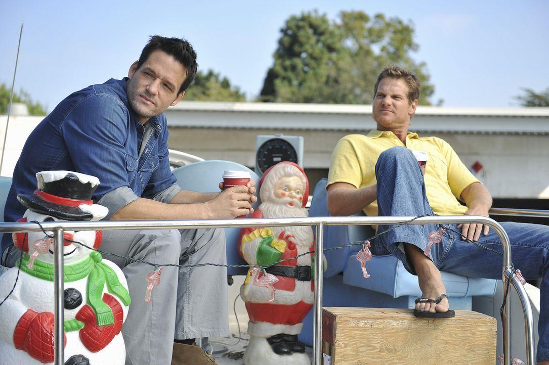 Wenn das nicht eine richtige Männerfreundschaft ist: Grayson (Josh Hopkins, l.) und Bobby (Brian Van Holt, r.) ... - Bildquelle: 2009 ABC INC.