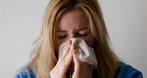 Allergien werden vor allem durch übertriebene Hygiene ausgelöst.