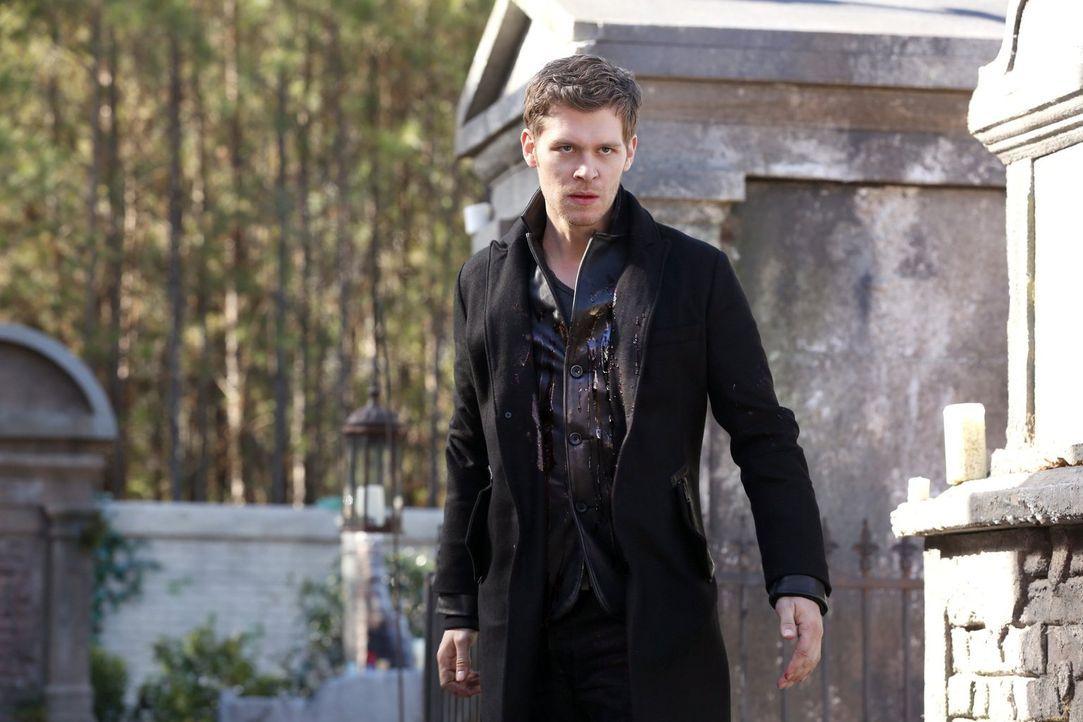 Können Klaus (Joseph Morgan) und Elijah ihrer verschollen geglaubten Schwester Freya wirklich vertrauen? - Bildquelle: Warner Bros. Entertainment, Inc