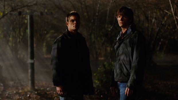 Versuchen ein Pärchen vor dem Tod zu retten: Sam (Jared Padalecki, r.) und De...