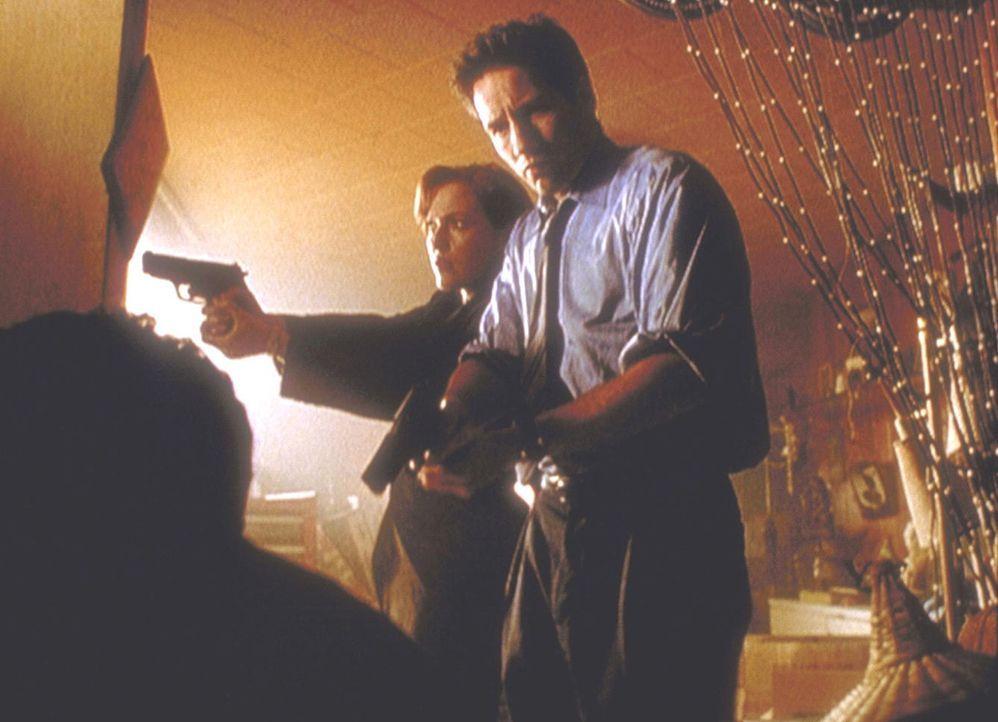 Scully (Gillian Anderson, l.) und Mulder (David Duchovny, r.) entdecken im ehemaligen Haus eines entflohenen Strafgefangenen ein grauenhaft zugerich... - Bildquelle: TM +   2000 Twentieth Century Fox Film Corporation. All Rights Reserved.