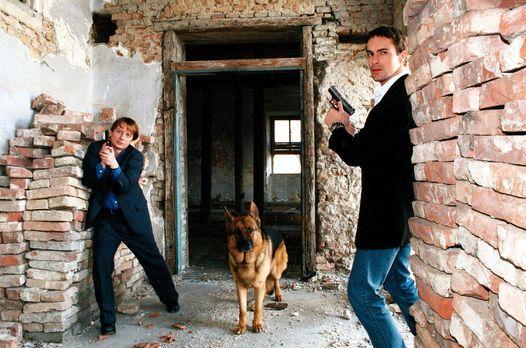 Kommissar Brandtner (Gedeon Burkhard, r.) und Böck (Heinz Weixelbraun, l.) ve...